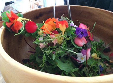 華やかさと繊細さが共存。野菜が主役のランチコースは身体にも心にも優しい癒しの料理。@レストラン アニス(初台)